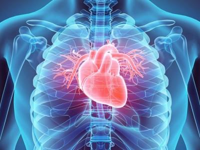 Empagiflozina mejora la condición de los pacientes con insuficiencia cardiaca