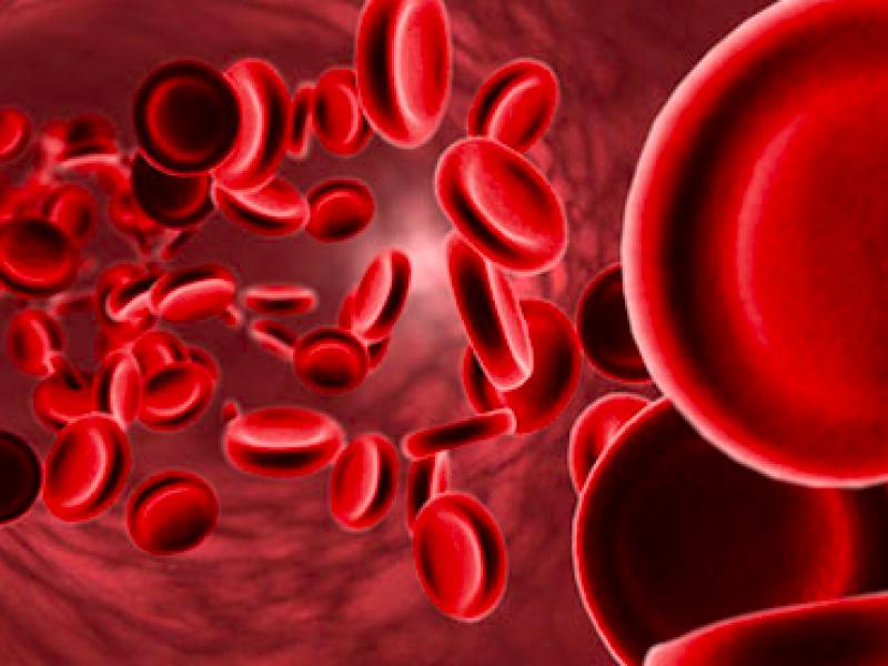 Día mundial del paciente en tratamiento con anticoagulantes